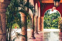 Hacienda San Pedro Chimay (julien.ginefri) Tags: mexico méxico america latinamerica yucatán yucatan hacienda sanpedrochimay