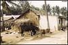 Sanctity in the Streets (Kechagiar) Tags: analog film kcgr olympus om1 zuiko 50mmf18 slr madeinjapan color fuji provia bangalore india karnataka