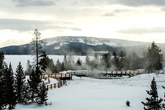 Yellowstone NP Trip - Day 4 (5) (tommaync) Tags: yellowstone yellowstonenationalpark yellowstonenp park national february 2018 wyoming nikon d7500 ynp gaa30thanniversary nature westthumb thermal hotspring steam boardwalk yellowstonelake frozen mountain lake trees snow ice