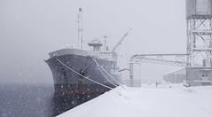 A Blizzard Descends on Aomori Port (fotographis) Tags: aomorijapan snow snowstorm japan fuji gfx50s gfx winter port ship blizzard 63mm fujinon ocean