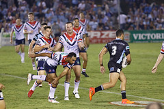 Sharks v Roosters Round 5 2018_129.jpg (alzak) Tags: 2018 chooks cronulla eastern easts league nrl national roosters rugby sharks suburbs action sport sportssydneyaustralia