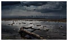 Tronc d'arbre sur la plage de Honfleur par temps pluvieux (M.G6) Tags: skyporn pétrochimie port le havre pluie pluvieux mer sea seine baie de tronc darbre plage beach marée basse manche nuages orage sombre clair obscur olympus olympusomd olympus25mmf12 em5