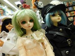 DSCN2381 (Luck Be) Tags: bjd abjd doll dollmeet dolls bjds abjds