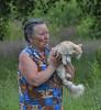 Village / В деревне (dmilokt) Tags: деревня village кот кошка cat dmilokt