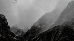 There is a Storm Brewing (sakthi vinodhini) Tags: settlement annapurna nepal himalayas abc trek backpack mountains hills greenery ngc forest landscape mountain tree dark deep bamboo wet rainy grass hdr storm wind rain elements rocks mist fog