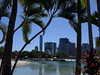 South Bank, Brisbane (tanetahi) Tags: winter subtropical swimminglagoon southbank brisbane queensland australia palms city landscaping