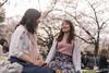 Young female friends talking under cherry blossoms (Apricot Cafe) Tags: img84738 asia asianandindianethnicities healthylifestyle japan japaneseethnicity japaneseculture shibuyaward tamronsp35mmf18divcusdmodelf012 tokyojapan yoyogipark afternoon candid carefree casualclothing charming cheerful cherryblossom cherryblossomshanami colorimage day enjoyment flower friendshop happiness leisureactivity leisureseat lifestyles nature newlife onlywomen outdoors people photography picnic publicpark sitting smiling springtime sustainablelifestyle talking togetherness toothysmile twopeople weekendactivities women youngadult shibuya tokyo jp