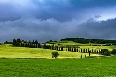 Val d'Orcia-028 (bonacherajf) Tags: italia italie valdorcia toscane tuscany ferme farm collines hills