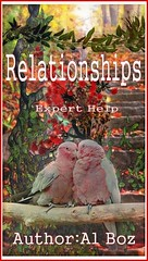 Relationships (Boekshop.net) Tags: relationships celal boz ebook bestseller free giveaway boekenwurm ebookshop schrijvers boek lezen lezenisleuk goedkoop webwinkel