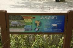 DSC_3676 (ucumari photography) Tags: ucumariphotography zoo miami fl florida march 2018