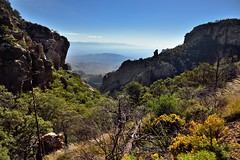Looking Down a Mountainside and then Across the Chihuahuan Desert into Mexico (Big Bend National Park)
