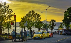 Summer Solstice 2018 (Christie : Colour & Light Collection) Tags: summersolstice summer vancouver bc canada beach shoreline ocean pacificnorthwest northamerica street taxi taxis goldenhour sunset golden streetlight candid evening dusk sundown warm people dog cars palmtrees trees flowers night happy outdoors side streetphotography nikon dslr nikkor sky water 2018 transportation light clouds downtown waterfront beautifulbritishcolumbia yellow cabs stoplight stop walk crosswalk