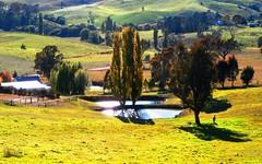 50 Foleys Creek Road, Oberon NSW