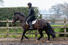 Cindy and Sophie Lesson-194.jpg (Steve Walmsley) Tags: lily jacinta horses sophie twoie lesson cindy