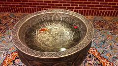 Goldfish (afs.harp) Tags: goldfish water iranian beauties
