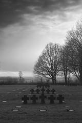 Cimetière allemand (ponzoñosa) Tags: cementerio cimetiere bn bw blancoynegro blancetnoir blackandwhite allemand alemán nazi nazismo cementery cross cruz ww2 segunda guerra mundial