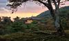 Kinkaku-ji sunset (Rodney Topor) Tags: japan ooak goldenpavilion kinkakuji landscape architecture building sunset hdr kyoto