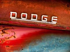 Dodge In Rust (J Wells S) Tags: dodge hoodemblem logo ornament chrome petoskey michigan rust rusty crusty junk