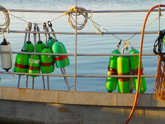 Buoys (desert11sailor) Tags: gloucester massachusetts harbor morning seaport ocean