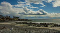 Colony Beach (Bud in Wells, Maine) Tags: colonybeach kennebunkport maine spring newengland coast vacationland
