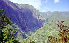 France, l'île de la Réunion, de très grandes cascades dans la vallée de Takamaka (Roger-11-Narbonne) Tags: réunion eau chute