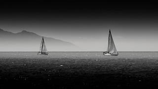 Sailing boats B&W