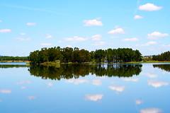 Barragem da Marateca | Marateca dam (António José Rocha) Tags: portugal barragem marateca barragemdamarateca espelho espelhodeágua natureza beleza árvores reflexos água paisagem