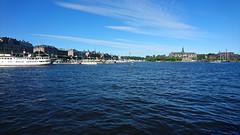 Stockholm, Sweden, June 2018 (Sterna999) Tags: stockholm sweden schweden nature wildlife landscape water wasser hafen harbour harbor
