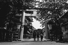 (Tednoir) Tags: monochrome mono blackwhite blackandwhite bw bnw city urban japan kyoto street temple