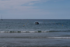 Calvi, Diving Calvi 2619.jpg (Hugues Brun) Tags: corse club plongée lieux divingcalvi france calvi