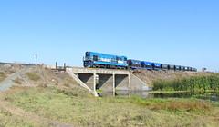 LOC N°5 CMP - CAP (Rodrigo yañez) Tags: cmp cap coquimbo peñuelas locomtora n°5 gr12 emd gm tren acero cuarto region chile la serena
