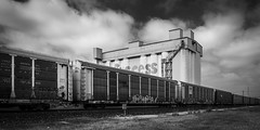 Train Passed The Silos On Sawyer III (Mabry Campbell) Tags: 2016 april h5d50c hasselblad houston texas thesilosonsawyer usa unitedstatesofamerica architecture blackandwhite building commercialphotography exterior fineart fineartphotography image landmark monochrome photo photograph photographer photography railroad silo train traincar traincars f56 mabrycampbell march 2018 march302018 20180330untitledcampbellh6a3416 100mm ¹⁄₁₂₅sec 100 ef100mmf28lmacroisusm fav10