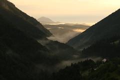 Dawn at Magura (Derbyshire Harrier) Tags: 2018 june nationalparkofpiatracraiului naturetrek summer mist forest pine zarnesti transylvania romania layers dawn sunrise morning magura