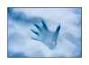 Hand print (sugarbellaleah) Tags: hand female print handprint snow icy cold winter indentation abstract art imprint season nature human outline background copyspace blue tone light shadow simplistic texture shades cool
