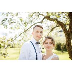 """WOW ich kann auch diesen hellen """"vintage-preset-allerweltslook"""" :D wenn ich ehrlich bin hat jede hochzeitsreportage von mir ein paar solcher bilder dieser art. ich poste die zwar nicht oft aber so ein paar helle romantics gehören auf jeden fall dazu. #hoc (hochzeitsfotograf.stuttgart) Tags: hochzeitsfotograf hochzeitsfotografie hochzeit hochzeitsbilder braut bräutigam brautpaar photoshop lightroom fotograf photographer photography wedding weddingphotographer bride groom couple"""