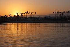 Santa Barbara Sunset - Stearns Wharf (russ david) Tags: santa barbara ca california sunset stearns wharf pacific ocean palm trees beach june 2018