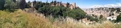 PANORÁMICA DE LA ALHAMBRA Y ALBAYZIN - GRANADA  PANORAMIC OF THE ALHAMBRA AND ALBAYZIN - GRANADA (Pepa Morente ( 2.200.000 de VISITAS )) Tags: generalife alhambra granadada andalucia panoramica albaycin huerta belleza vegetación móvil me yo feliz