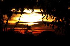 Sol_00038a (João Batista**) Tags: sol sun natureza nature
