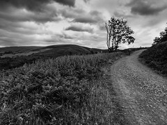 Afan Argoed B&W (Richgt1) Tags: afanargoed bw blackandwhite black white wales mtb clouds cycling iphone 5s mountainbiker