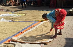1 0Up-hBmqAvYdGR1FNzIL1w (Matriux2011) Tags: barefoot dirtysoles cracksoles indian nepali barefootextreme talonescurtidos piesrajados