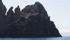 Scandola (Michel Couprie) Tags: europe france corse corsica sea seascape seaside mer rock cliff gull bird mouette scandola canon eos tse24mmf35l couprie backlight light