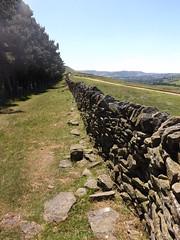 Stone wall walk at Hope Cross Derbyshire (TWIGGYR2012) Tags: lady bower derbyshire hope cross stone wall