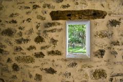 Tu voyeur. (*Nenuco) Tags: nenuco window ventana green wall arasdelosolmos valència spain nikond5300 18105 rollingstoniano hat sombrero book libro