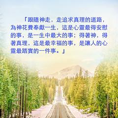 金句卡片-跟隨神走,走追求真理的道路 (跟隨耶穌腳蹤網) Tags: 金句卡片 跟隨神 追求真理