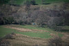 Spot the Range Rover (DJNanartist) Tags: nikond750 nikon28300mm lakedistrict anartist goldscope dalehead