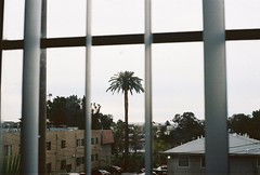 (k.atkins12) Tags: visuals artofvisuals art portra400 istillshootfilm fatalframes california photography filmphotography