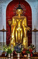 Shwezigon Temple Bagan Myanmar-7a (Yasu Torigoe) Tags: gold color temple sony a65 dt18250mm shweizion bagan myanmar burma feb2015 noon asia pagoda buddhist chyar tree blue sky religious ancient building nyaungu saved architecture tower