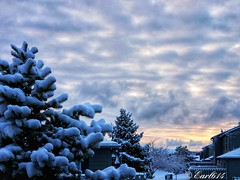 Last snowy sunrise of the season! (Edale614) Tags: snow sunrise snowy sunsetsaroundtheworld cloudy clouds nature naturelovers columbus ohio sky skyporn photography photo picoftheday pic