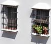FINESTRE ANDALUSE (ADRIANO ART FOR PASSION) Tags: andalusia finestre luci ombre soleggiato adrianoartforpassion nikon nikond90 viaggio vacanze 2017 finestraconvasodifiori 70mm nikkor18200 lucieombre coppia luilei