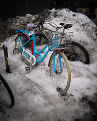 P1010033 (vargandras) Tags: snow bycicle bike blue red